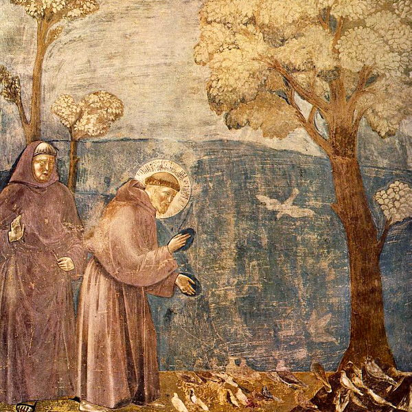 st francis of assisi a legendary hero and a popular saint
